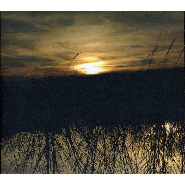 Anthony Green AVALON CD