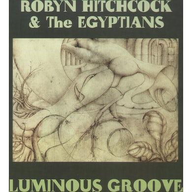 Robyn Hitchcock LUMINOUS GROOVE Vinyl Record