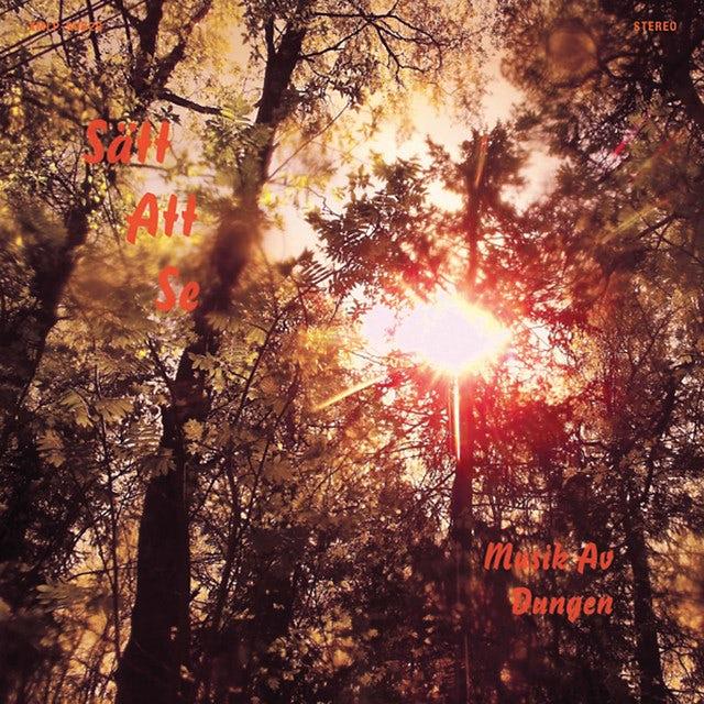 Dungen SATT ATT SE Vinyl Record