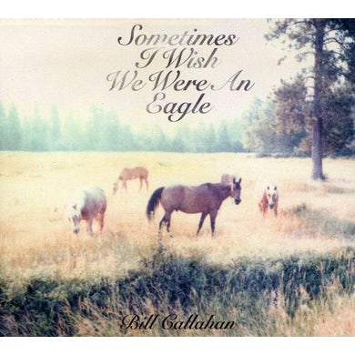 Bill Callahan SOMETIMES I WISH WE WERE AN EAGLE CD