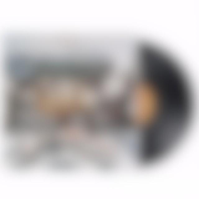 Wilco THE ALBUM) Vinyl Record