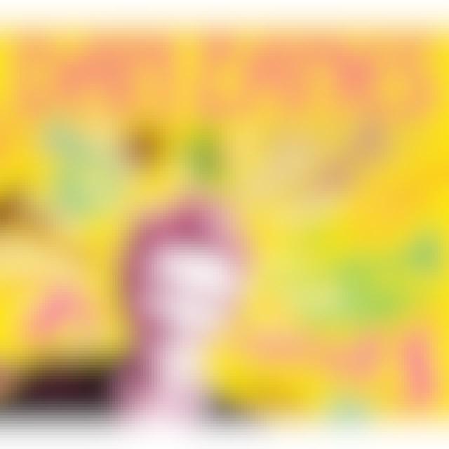 Dan Zanes & Friends 76 TROMBONES CD