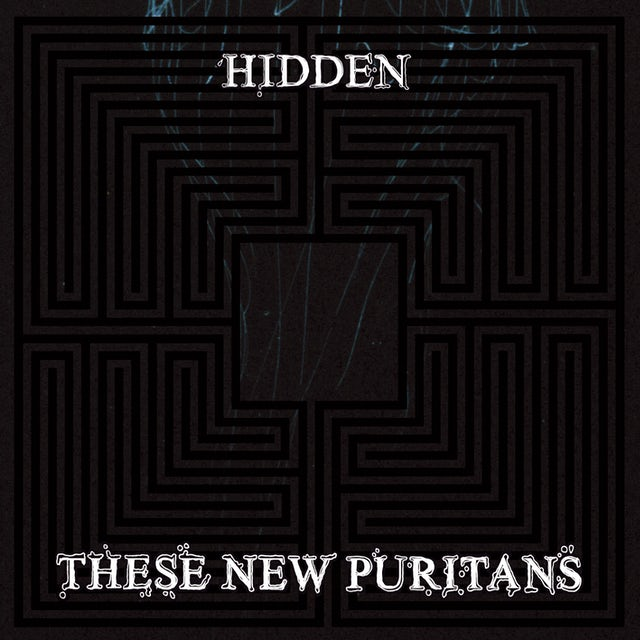 These New Puritans HIDDEN Vinyl Record
