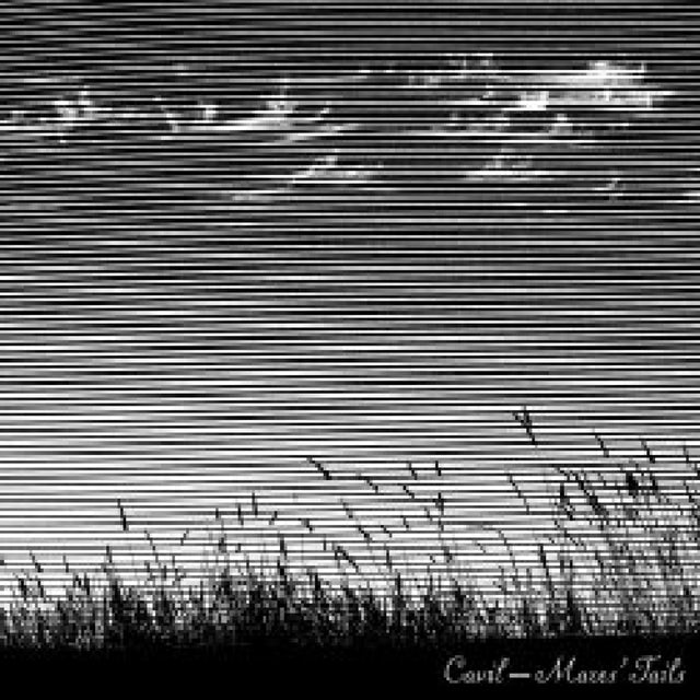 Cavil MARES TAILS CD