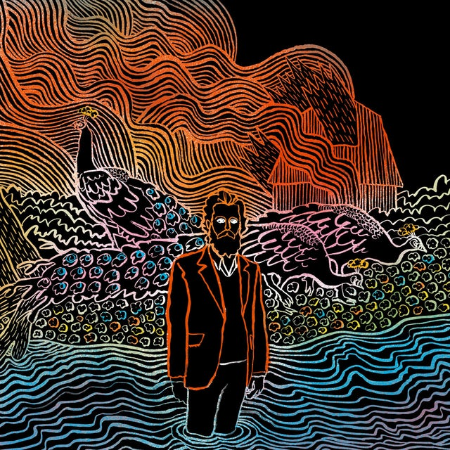 Iron & Wine KISS EACH OTHER CLEAN CD