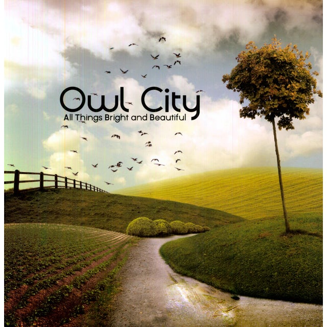 Owl City ALL THINGS BRIGHT & BEAUTIFUL Vinyl Record