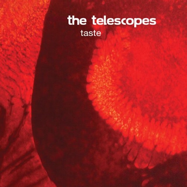 Telescopes TASTE Vinyl Record