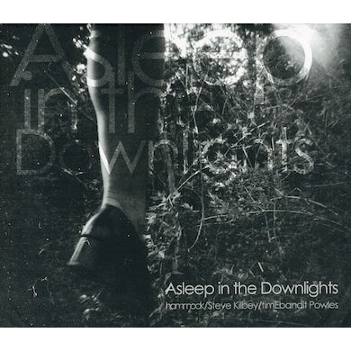 Hammock ASLEEP IN THE DOWNLIGHTS CD