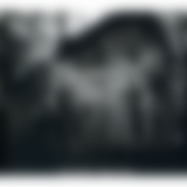 Forgotten Tomb SPRINGTIME DEPRESSION CD