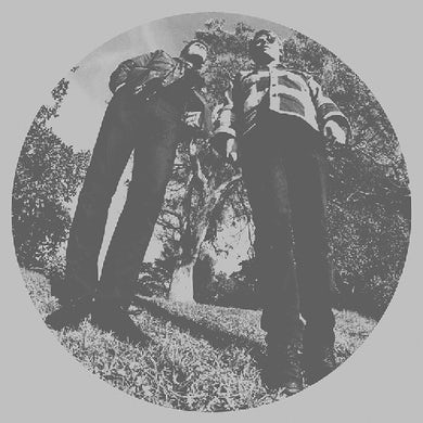 Ty Segall HAIR Vinyl Record