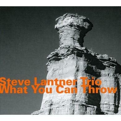 Steve Lacy WHAT YOU CAN THROW CD