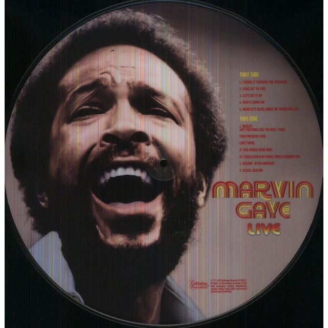 Marvin Gaye LIVE Vinyl Record