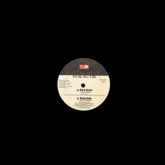Various STALAG Y2K Vinyl Record