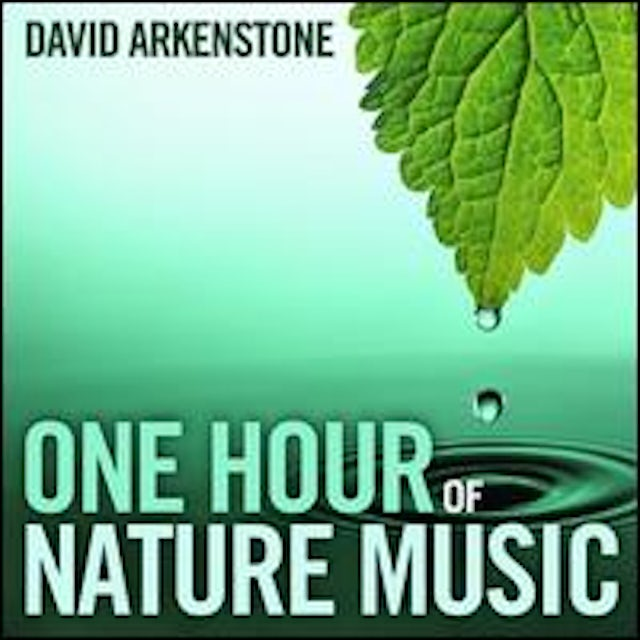David Arkenstone ONE HOUR OF NATURE MUSIC CD