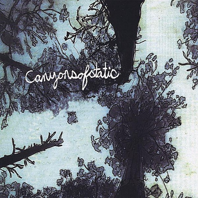 Canyons Of Static DISAPPEARANCE CD