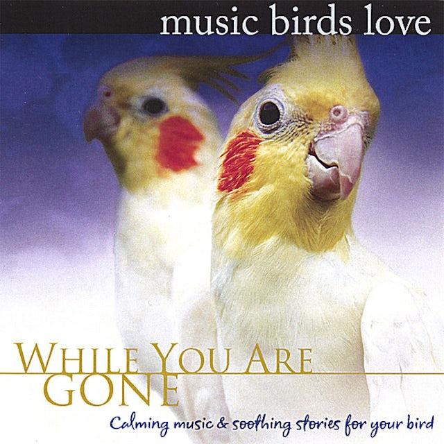 Bradley Joseph MUSIC BIRDS LOVE: WHILE YOU ARE GONE CD