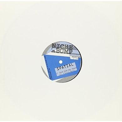 Spatial SLAMMER Vinyl Record
