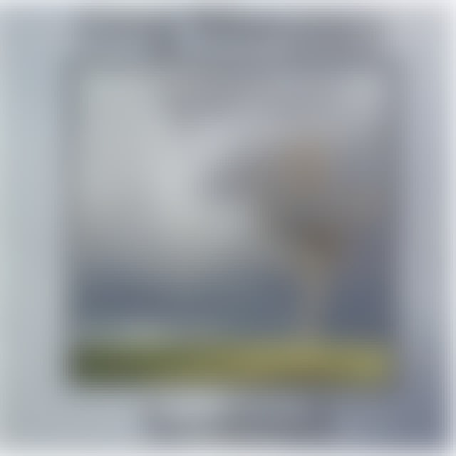 Greg Maroney SENTINEL CD