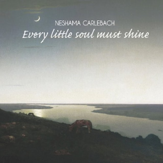 Neshama Carlebach EVERY LITTLE SOUL MUST SHINE CD