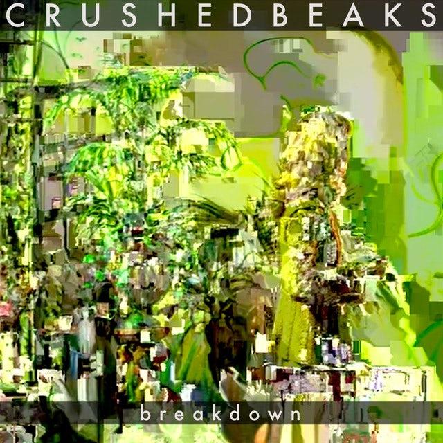 Crushed Beaks BREAKDOWN Vinyl Record