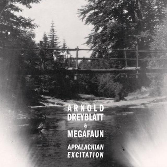 Arnold Dreyblatt & Megafaun APPALACHIAN EXCITATION CD