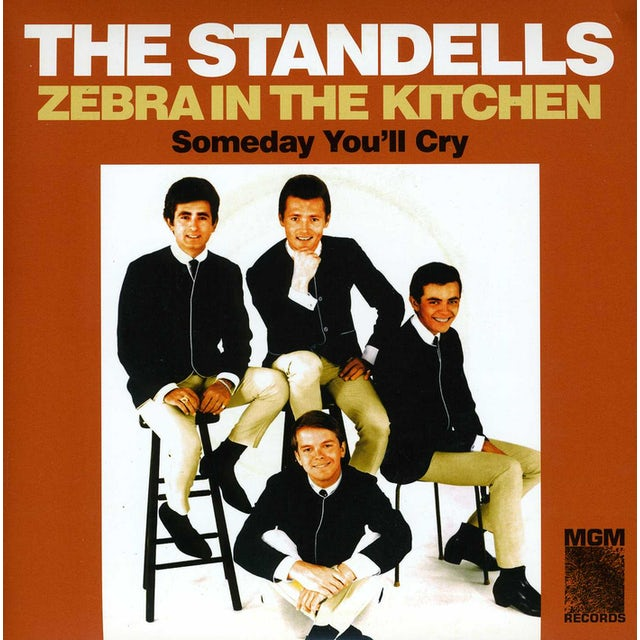 The Standells ZEBRA IN THE KITCHEN / SOMEDAY YOU'LL CRY Vinyl Record