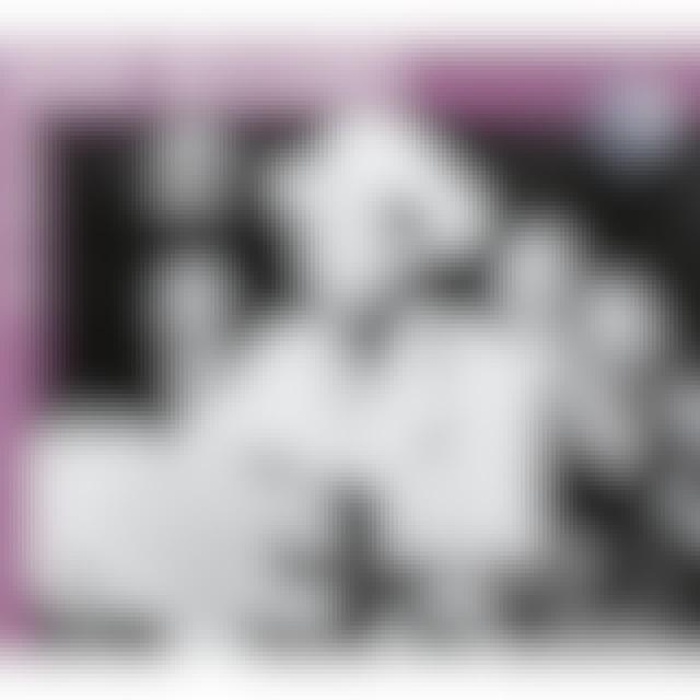 Hank Williams FABOULOUS CD