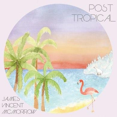 James Vincent Mcmorrow POST TROPICAL Vinyl Record