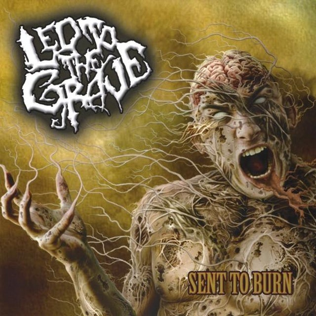 LED TO THE GRAVE SENT TO BURN CD