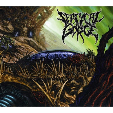 Septycal Gorge GROWING SEED OF DECAY CD