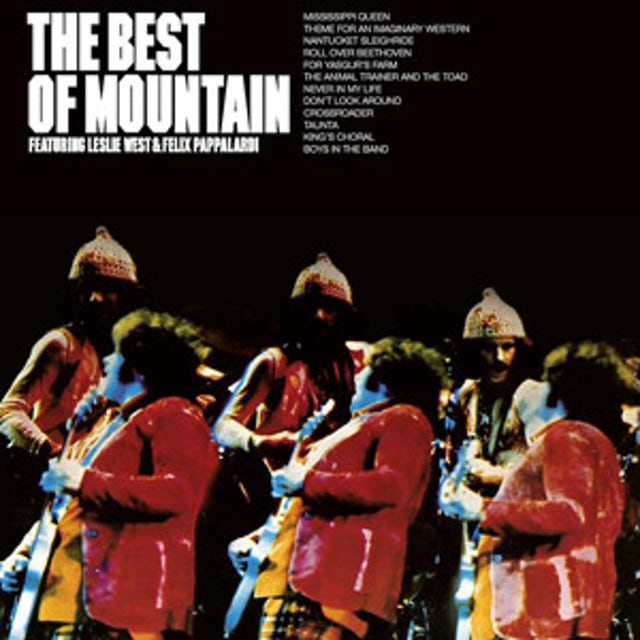 BEST OF MOUNTAIN Vinyl Record
