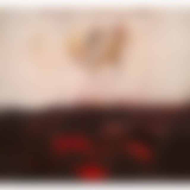 Conor Oberst UPSIDE DOWN MOUNTAIN Vinyl Record