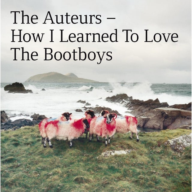 Auteurs HOW I LEARNED TO LOVE THE BOOTBOYS CD