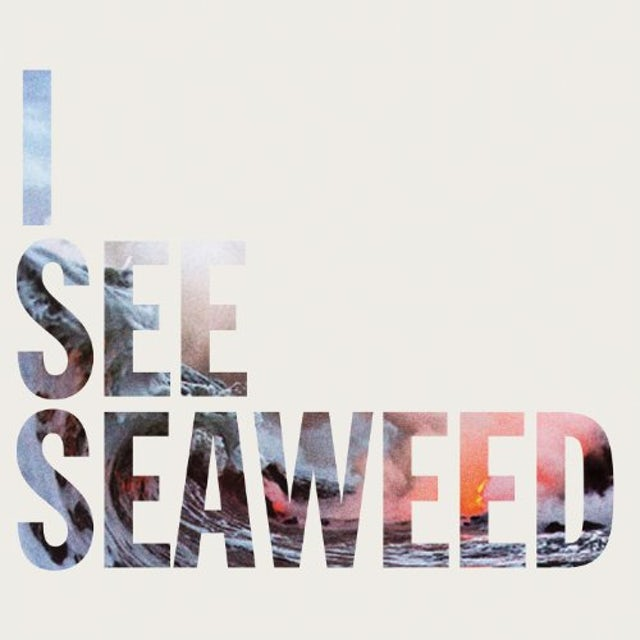 The Drones I SEE SEAWEED Vinyl Record
