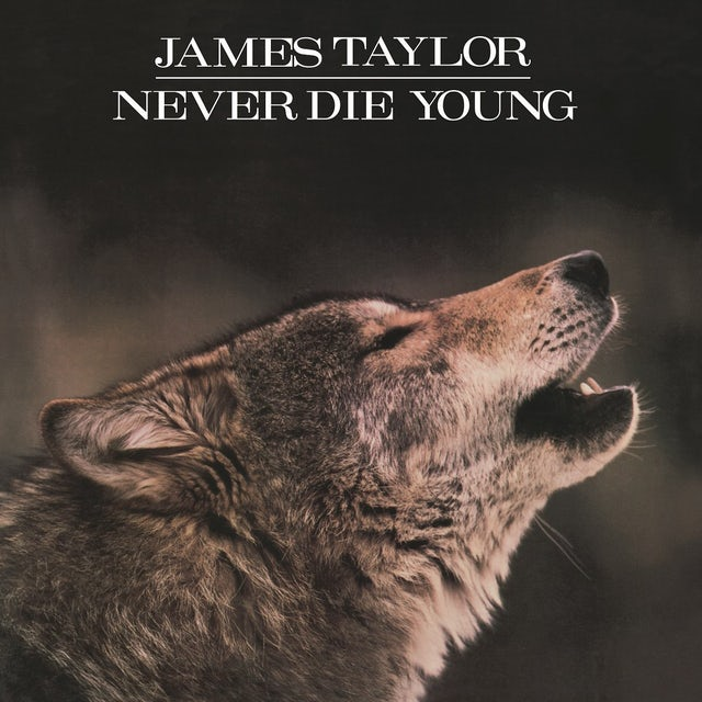 James Taylor NEVER DIE YOUNG Vinyl Record - Holland Release