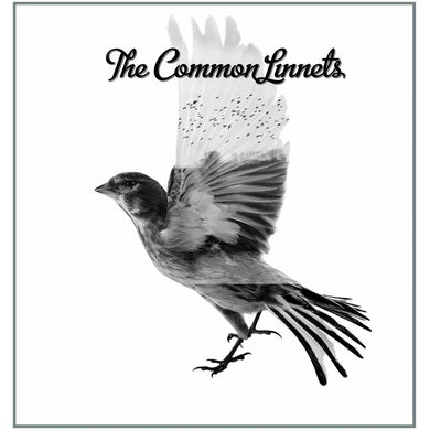 THE COMMON LINNETS Vinyl Record