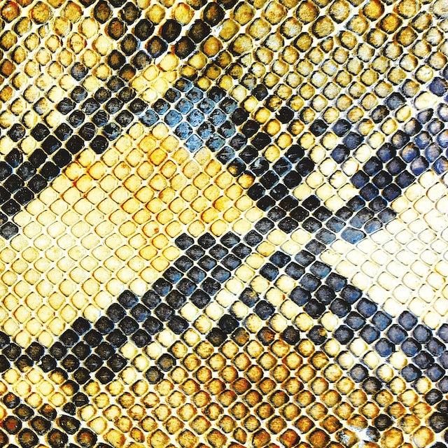 The Amazing Snakeheads AMPHETAMINE BALLADS Vinyl Record