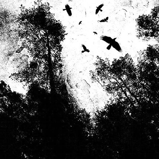Autumn'S Dawn Vinyl Record
