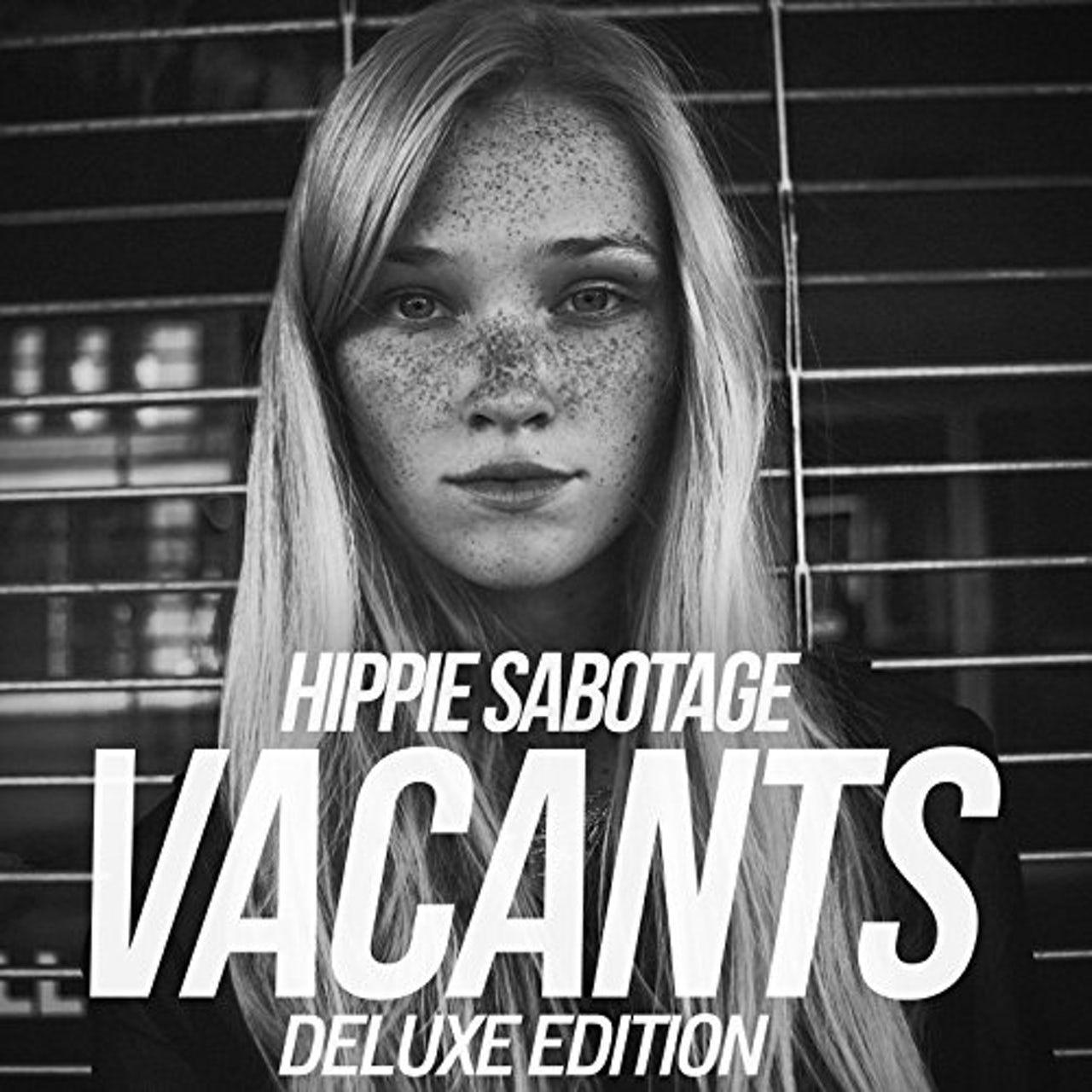 hippie sabotage providence album cover