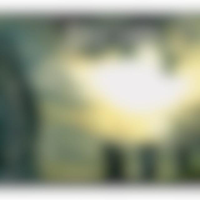 Dunkelschoen IRFIND CD