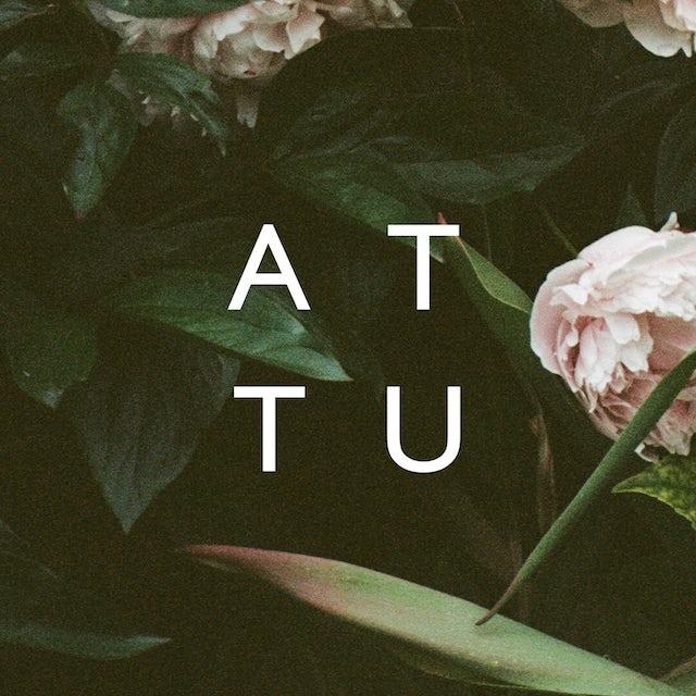 ATTU WE ARE ORDINARY PEOPLE Vinyl Record