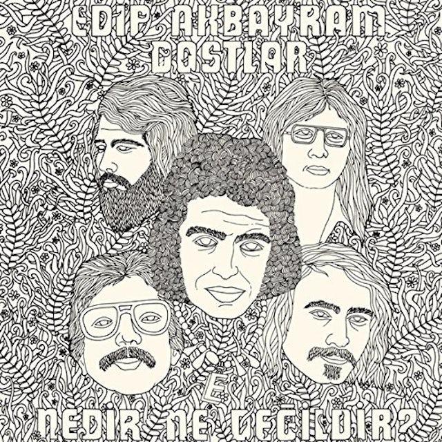 Edip Akbayram & Dostlar NEDIR NE DEGILDIR Vinyl Record