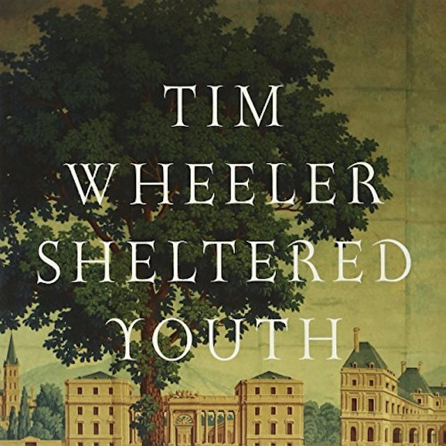 Tim Wheeler SHELTERED YOUTH Vinyl Record