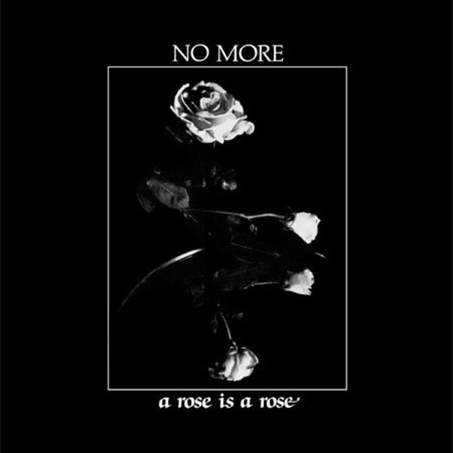 No More A ROSE IS A ROSE Vinyl Record