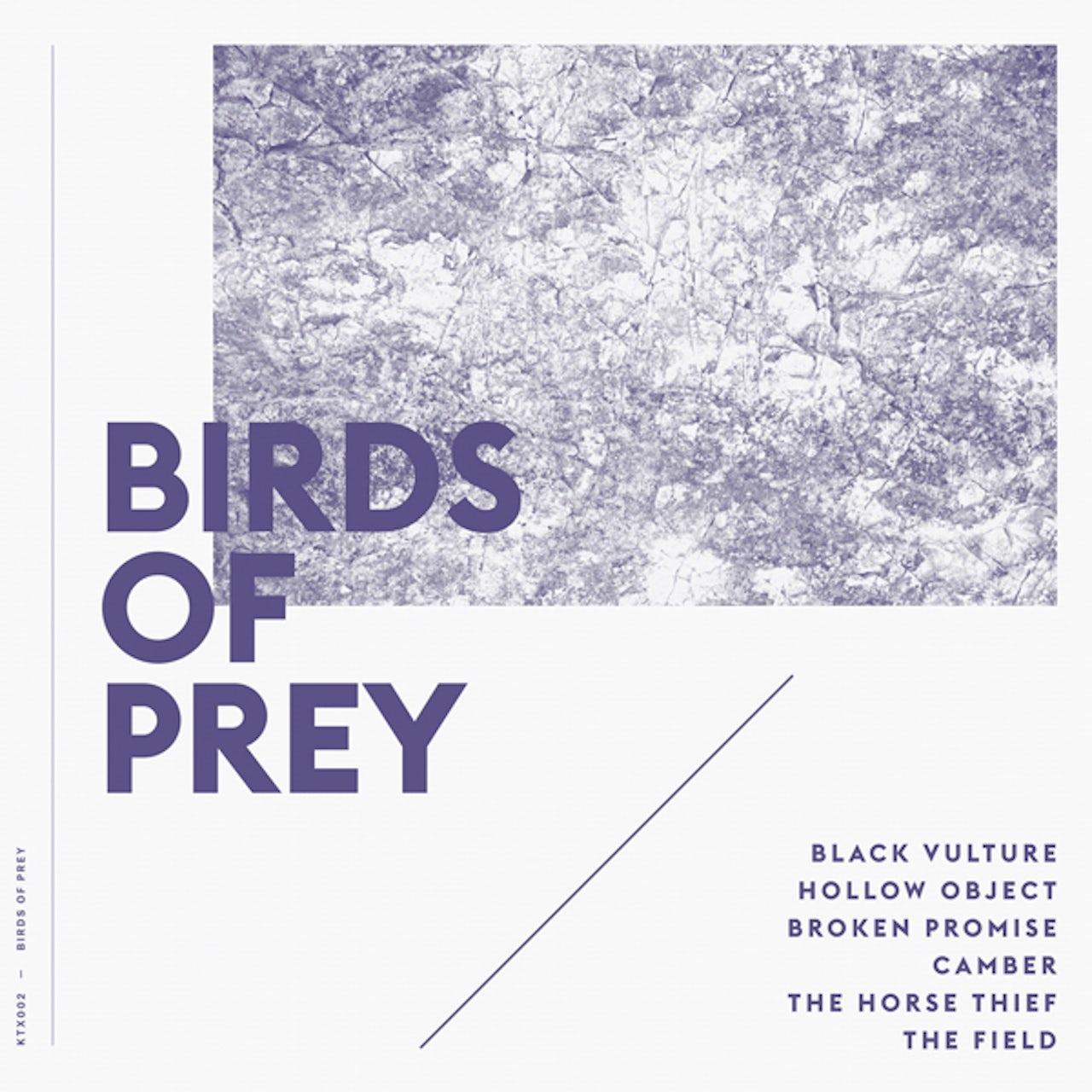 Birds Of Prey Vinyl Record