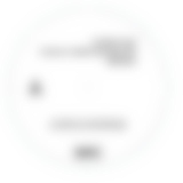 Fatboy Slim STAR 69 / SONG FOR SHELTER Vinyl Record