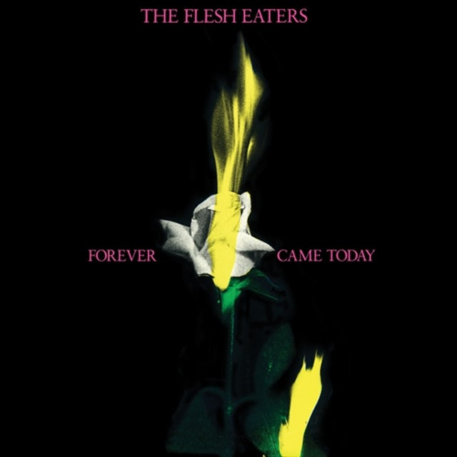 Flesh Eaters FOREVER CAME TODAY CD