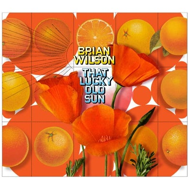 Brian Wilson THAT LUCKY OLD SUN Vinyl Record
