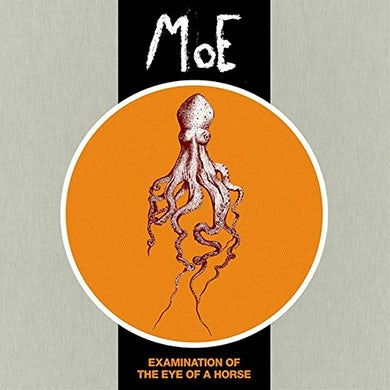 moe. EXAMINATION OF THE EYE OF A HORSE Vinyl Record