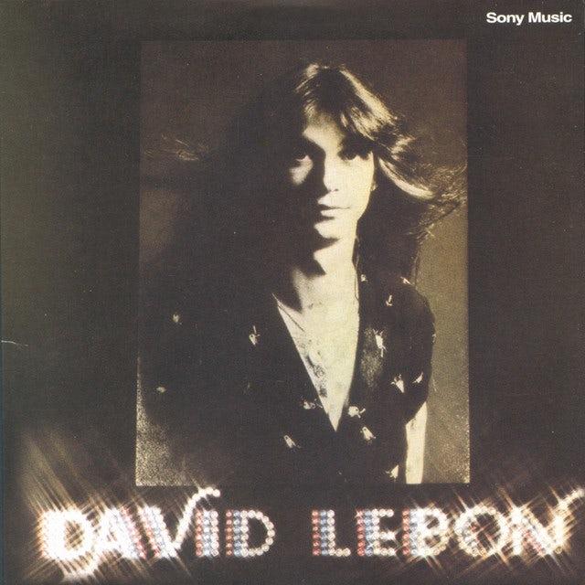 David Lebon Vinyl Record